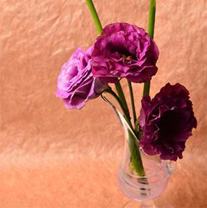 雑貨・花器